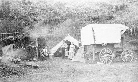Wagon Camping