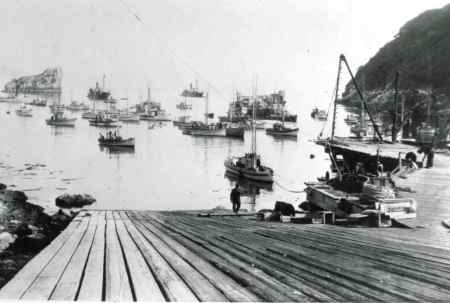 HC.Trinidad.Whaling.1920