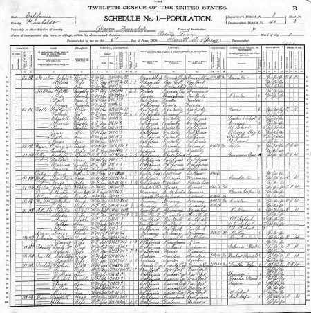 Devlin.Thos.Census.1900.